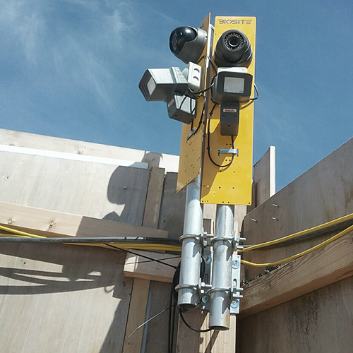 biosite cctv cameras installed on corner